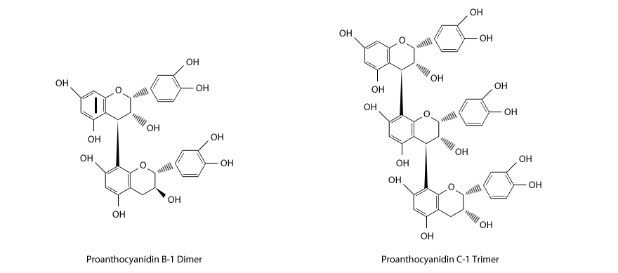 Structures of proanthocyanidin oligomers.