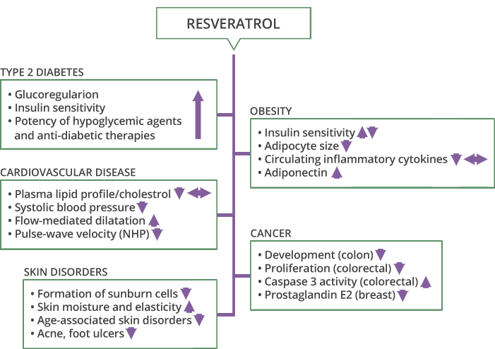 protective effect of resveratrol Resveratrol was stored as a powder and sterile phosphate-buffered saline  , the results of present study indicated that sirt1 may have a protective effect against dr.